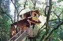 Tree House Construction Nainital