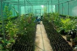 Agriculture Greenhouse Services
