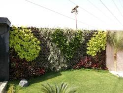 Gardening Service Gardening Job Work In Lucknow
