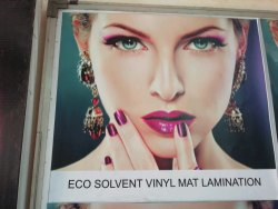 Solvent Vinyl Flex Printing