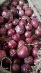 Nashik Red Onions