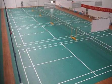 Tugania Indoor PVC Badminton Court Flooring