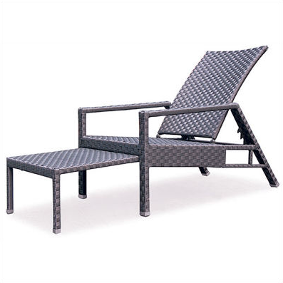 Lounge Deck Chair Deckchair