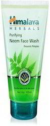 Himalaya Purifying Neem Face Wash - 100 ml