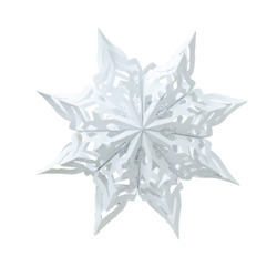Flakes Paper Star