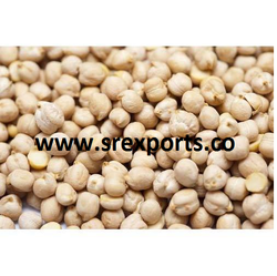 Indian White Small Chick Peas, High in Protein