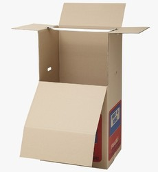 Hanger Pack Cartons