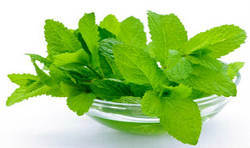 Mint Leaves, Packaging Size: 1 kg