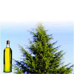 Soluble Deodar Oil