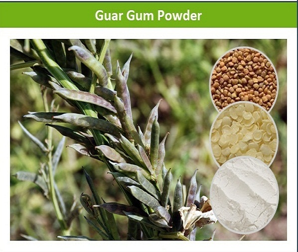 100% Soluble Guar Gum Powder