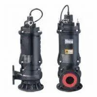 Sewage Sump Pump