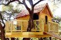 Tree House Construction Bangalore