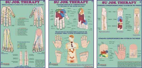 Sujok Therapy Chart at Rs 150 /set | Medical Chart | ID ...