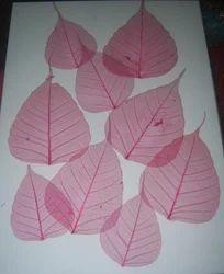Custom Colored Skeleton Leaves In Various Sizes