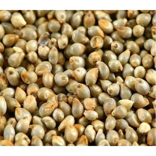 Seeds Food Market
