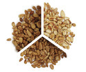 Pine Nuts Testing Services