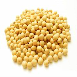 Organic Soybean Seed