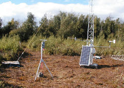 Meteorological Monitoring Service