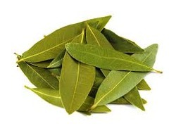 Bay Leaves Testing Services