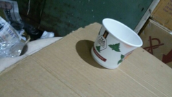 Disposable  Paper Glass 60ml