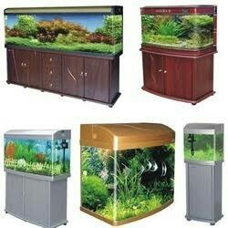 Fish Tanks In Chennai Latest Price Mandi Rates From Dealers In Chennai