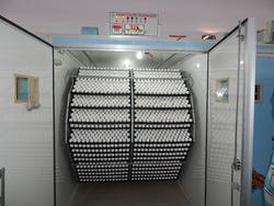 Poultry Incubators Poultry Incubator Manufacturers