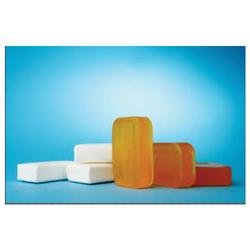 Detergent Cake Testing Services