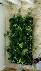 Hyperboles Vertical Gardening