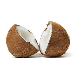 Pollachi Semi Husked Fresh Coconut, Packaging Size: 50 Kg, Coconut Size Available: Large