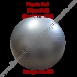 GYM Ball or Physio Ball