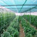 Polyethylene Green Agriculture Field Shade Net