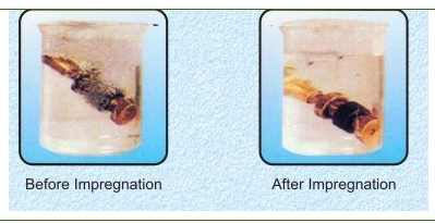 Impregnation Before And After