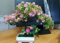 Hyperboles Artificial Plants With Pot