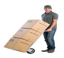Domestic Courier Service In India